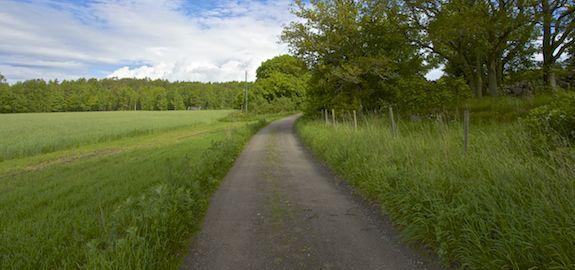 Landeveien